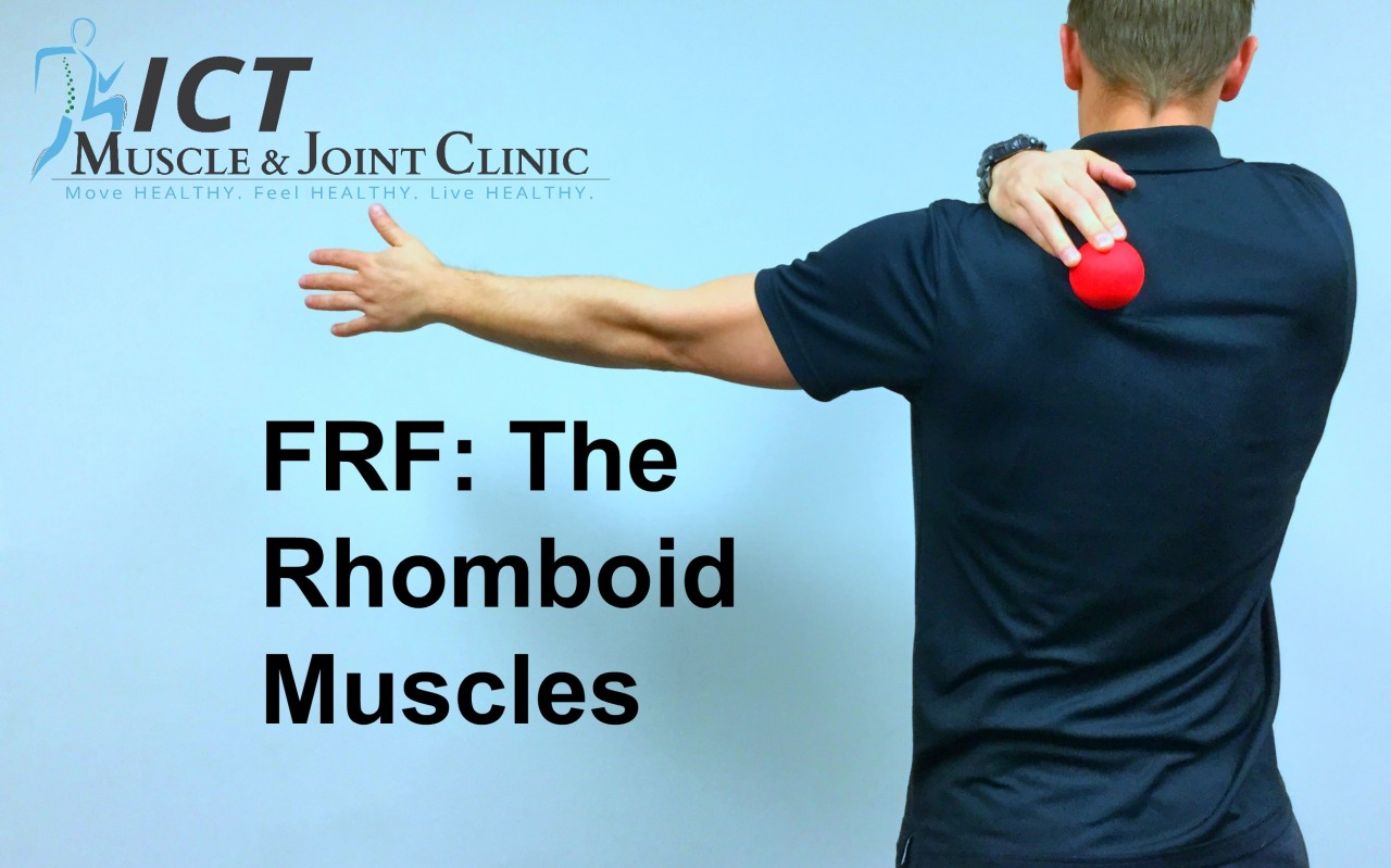 FRF: The Rhomboid Muscles